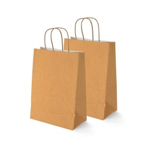 Kraft paper bag with handles various colors and sizes