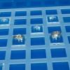 Expositor caja de anillos con bases 12-49 unidades