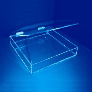 Expositor caja con tapa con bisagras